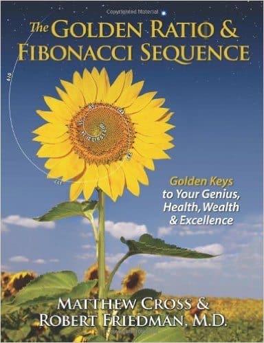 Fibonacci And Genius